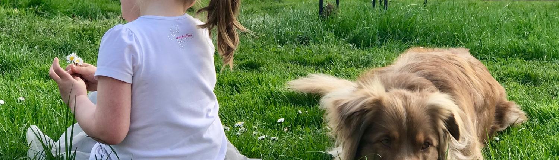 Happy-Dog-Timmys-Welt-Hundefutter-Nassfutter-Bio-getreidefrei-Anifit-03